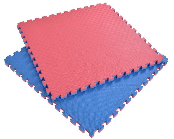 Double Layer Eva Sports Gym Mat red and blue