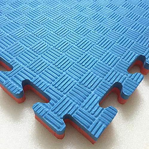 Interlocking-hajex-mat-double-color-blue-red